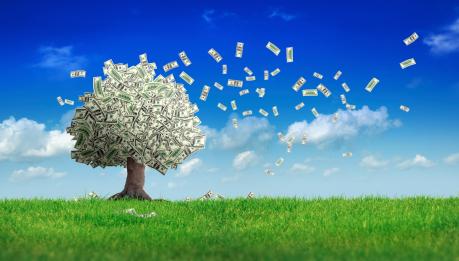 Money Tree blowing leaves