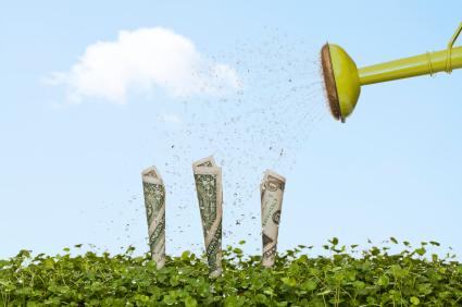 watering dollars