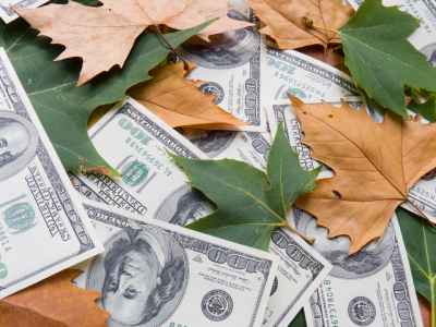 leaves money