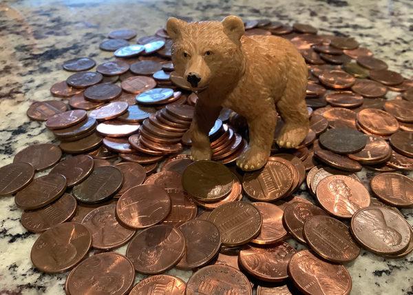 bear on pennies